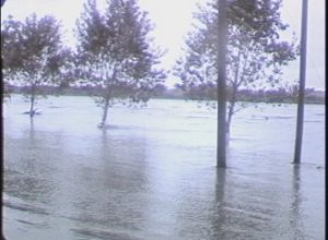Flooding on the Llano River (1957)